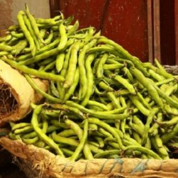 About Fave (Fava Beans)