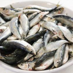 About Sarde (Sardines)