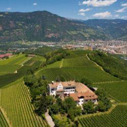 Wine Pairings for Tagliatelle con Radicchio e Speck
