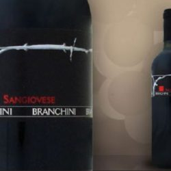 Wine Pairings for Tagliatelle alla Bolognese