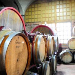 Wine Pairings for Orecchiette con Ceci e Salsiccia (Chickpeas and Sausage)