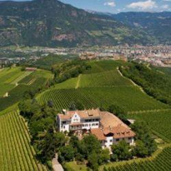 Wine Pairings for Rigatoni con Speck, Panna, e Pistacchio,